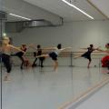 Alfredo Fernandez klassiek ballet